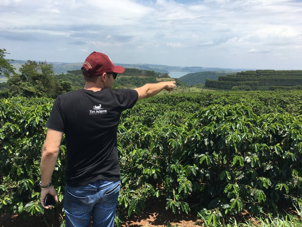 Tim Adams Specialty Coffee Growers